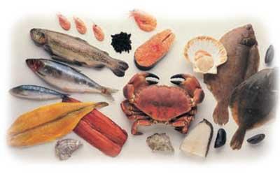 C mo conservar la carne y el pescado alicia crocco - Carne manipulacion de alimentos ...