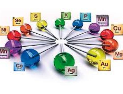 Conserva la salud con minerales