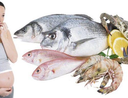 Consumo de pescados durante el embarazo: mitos y verdades